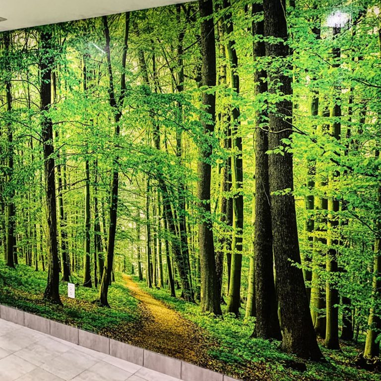 luxury wallpaper of a forest in commercial building Markham